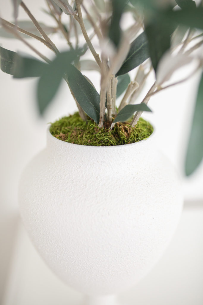 Recreating the Studio McGee Olive plant arrangement with what I had - A look at how it turned out.